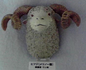 大哺乳類展 (3).jpg